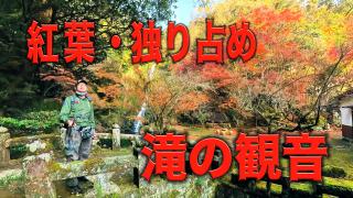 紅葉・独り占め~滝の観音